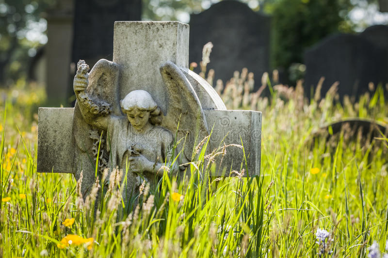 Grave & Grass. Sunny cemetery image of headstone with angel amongst wild grass and flowers royalty free stock photography