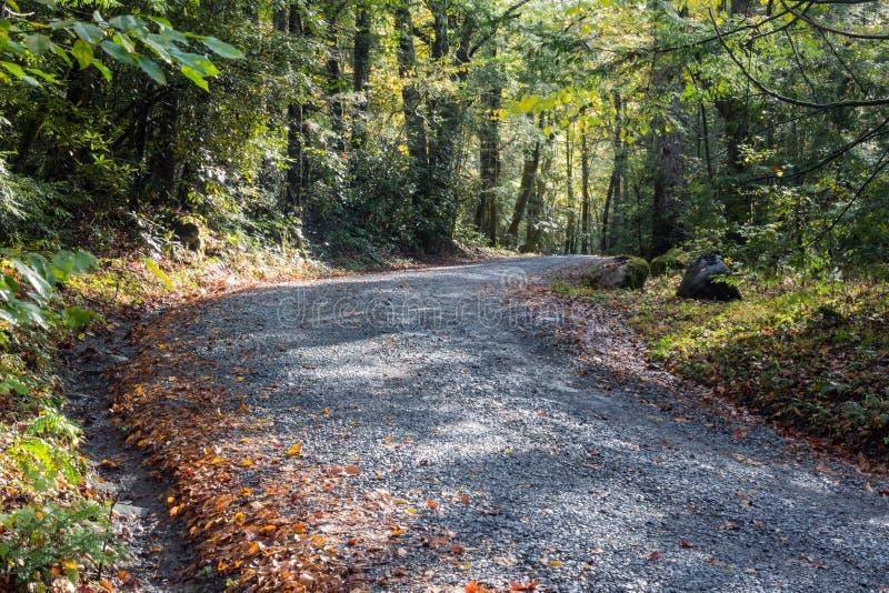 Gravel дорога водя в древесины на солнечный предыдущий день осени, большие закоптелые горы стоковые изображения