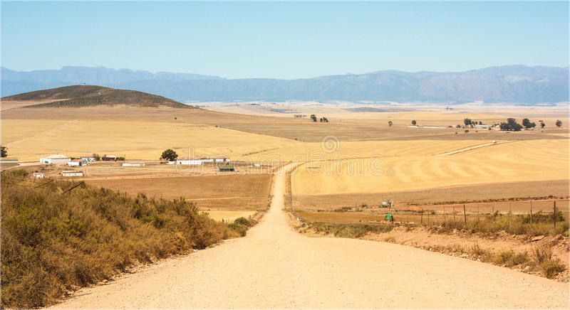 Gravel/Dirt Road on farmlands stock image