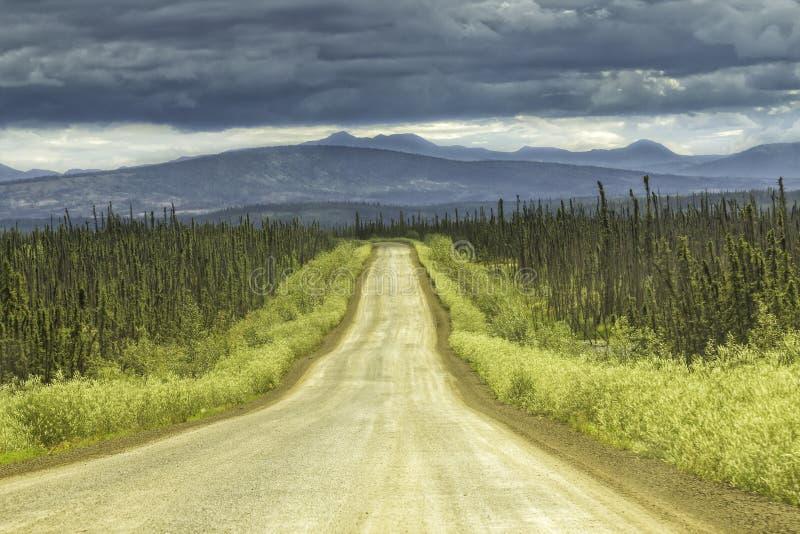 Gravel Road In Alaska Stock Image