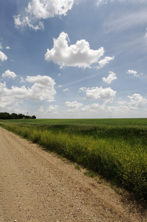 Download Gravel Road Recedes To Horizon -rural Farming Area Stock Photo - Image: 5717274