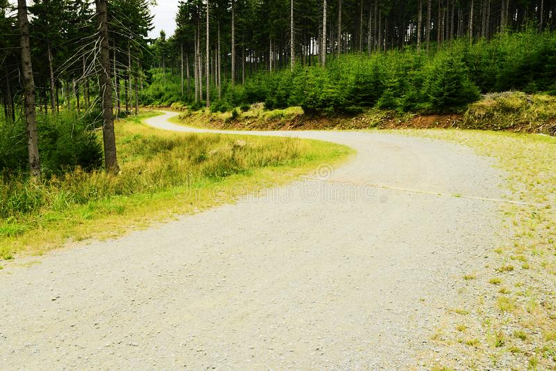 Gravel road winding in spruce forest in the Owl Mountains Landscape Park Sudetes, Poland. Gravel road winding in spruce picea abies evergreen coniferous forest stock image