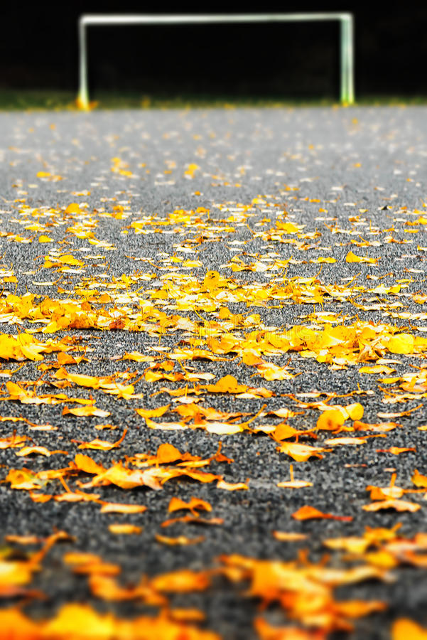 Gravel Soccerfield Covered With Autumn Leaves Stock Photo
