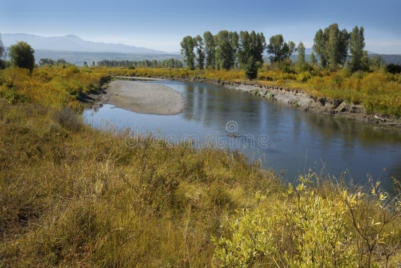 Gravelez la barre, rivière de fourchette de Buffalo, Jackson Hole, Wyoming photos stock