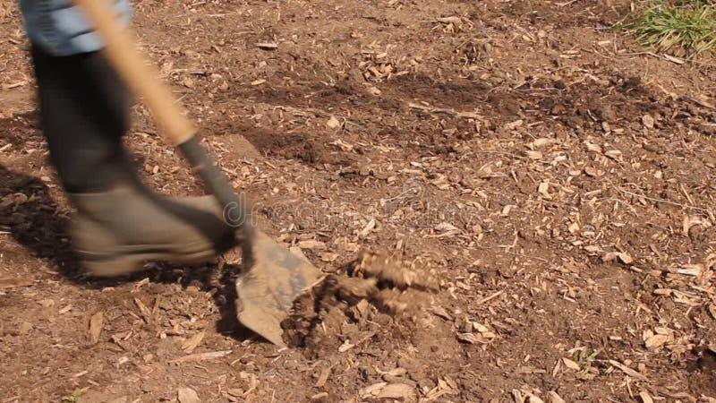 Gravend Gat in Vuil stock video