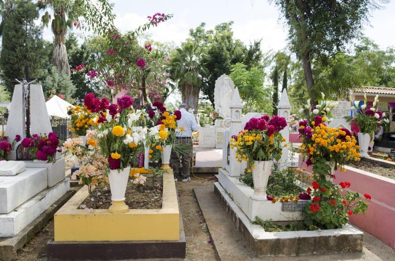 Graves decorated with flowers. OAXACA, OAXACA, MEXICO - NOVEMBER 2, 2016: Graves decorated with flowers at the Oaxaca General Cemetery in Oaxaca City, México stock photos