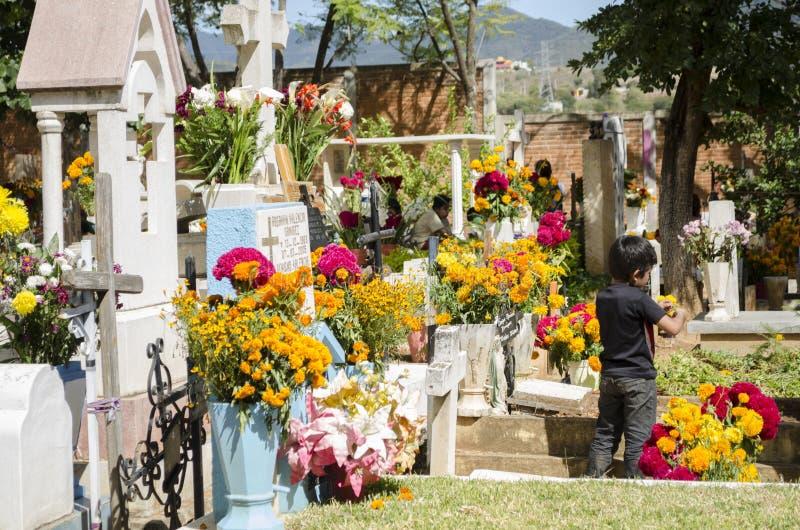 Graves decorated with flowers. OAXACA, OAXACA, MEXICO - NOVEMBER 2, 2016: Graves decorated with flowers at the Oaxaca General Cemetery in Oaxaca City, México stock images