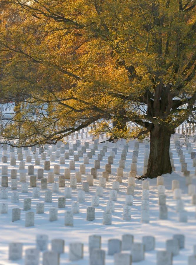 Gravestons en nieve imagen de archivo