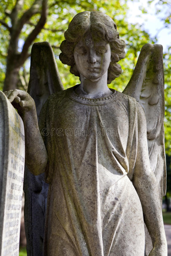 Download Graveyard Angel stock photo. Image of loss, angels, graveyard - 34231918