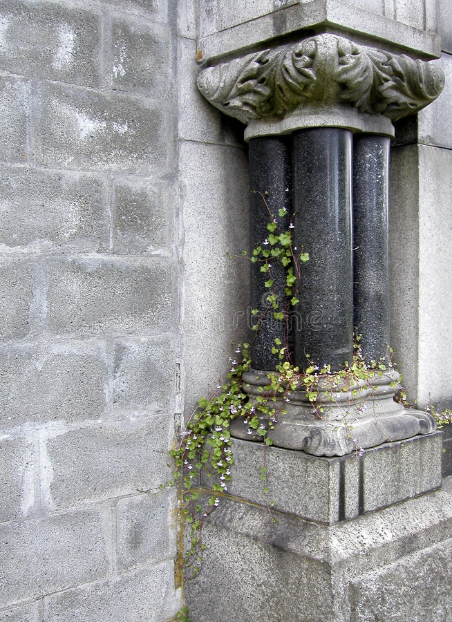 Download Graveyard Gothic stock image. Image of grief, vine, gray - 116109