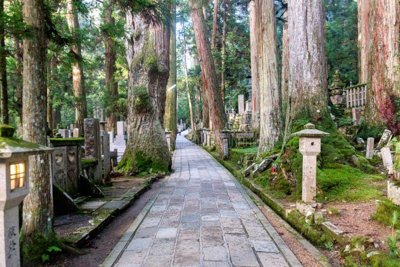 Graveyard of Mount Koya, Japan. Graveyard of Mount Koya (Koya San), near Kobo-Daishi's shrine, in the Kansai peninsula, Japan stock photography