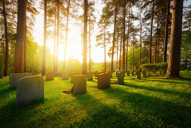 Graveyard in sunset with warm light. And feeling and shadows falling from trees and headstones stock photo