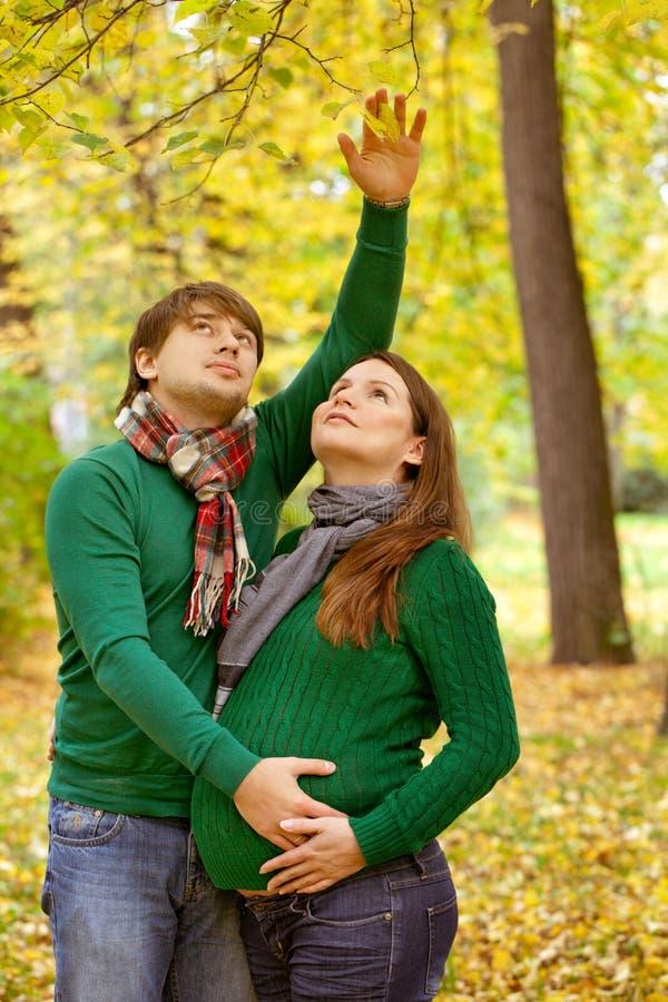 Gravid koppla ihop har gyckel i parkera royaltyfria foton