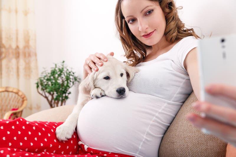 Gravid kvinna med hennes hemmastadda hund arkivfoto