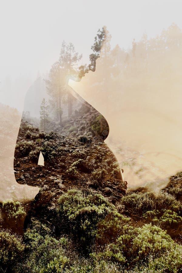 Gravid kvinna som kombineras med naturen royaltyfri foto