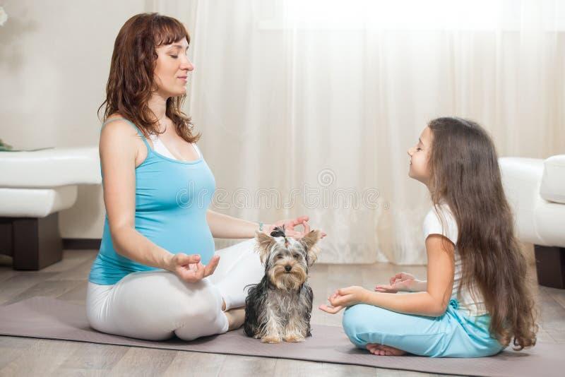 Gravid moder som hemma mediterar med hennes dotter och älsklings- hund royaltyfri fotografi