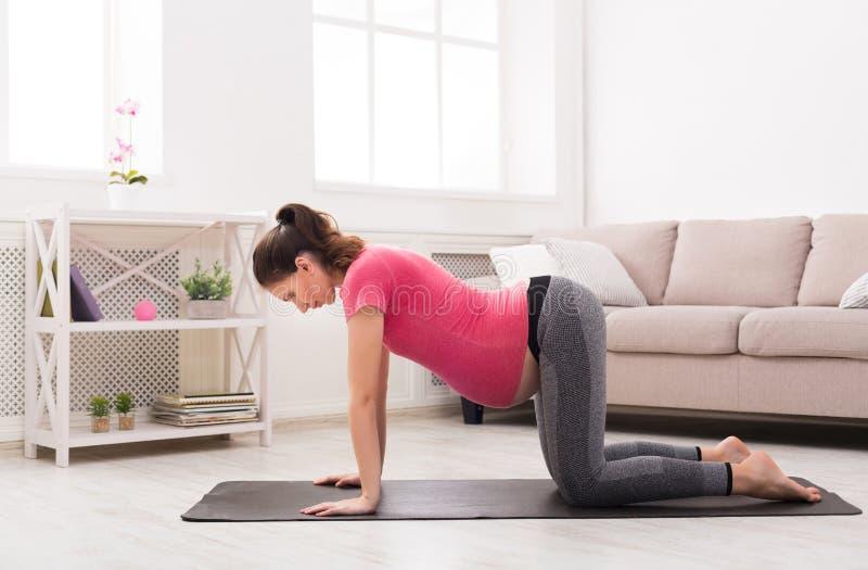 Gravid praktiserande yoga för ung kvinna hemma fotografering för bildbyråer