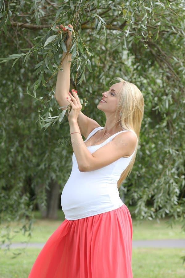 Gravid ung flicka stor härlig buk royaltyfri fotografi