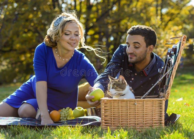Gravida lyckliga och le par på picknick med katten royaltyfri bild