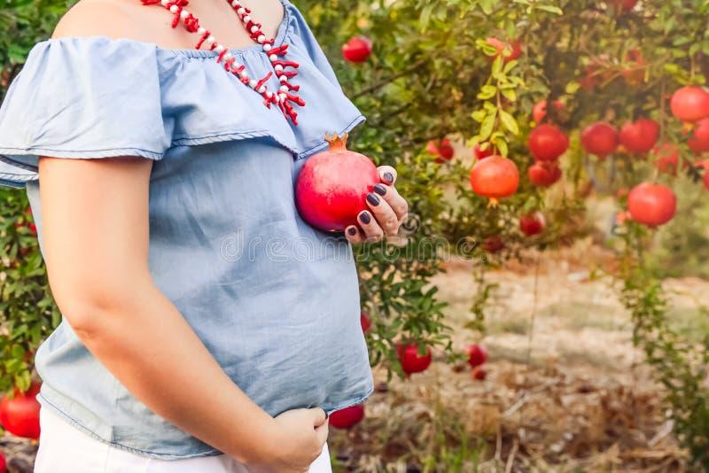 Gravidez e nutrição - mulher gravida com fruto da romã à disposição no fundo do jardim do por do sol Conceito da fertilidade sele fotografia de stock royalty free