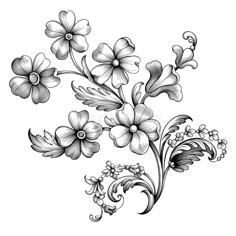 Gravierte Gänseblümchenrahmengrenzblumenverzierung der Rolle des Blumenweinlesefrühlingsblumensommers barocke viktorianische R lizenzfreie abbildung