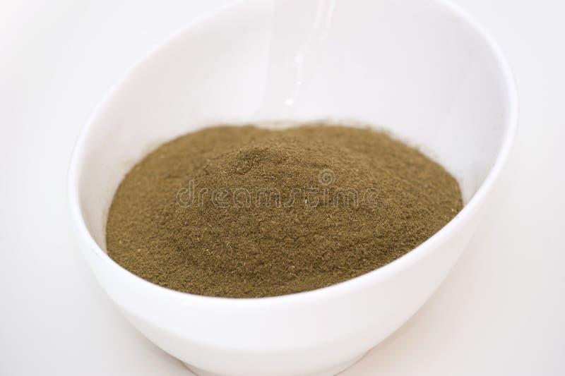 Graviola saures Beschwichtigungsmittel Pulver stockfotos