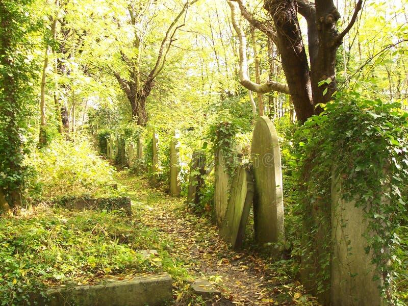 Gravstenar i den Highgate kyrkogården royaltyfri bild