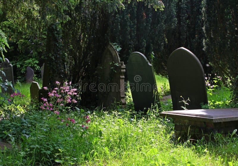 Gravstenar som är gamla, i skuggad landskyrkogård arkivfoton