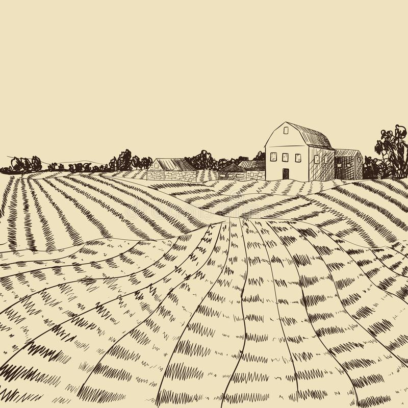 Gravura em àgua forte da paisagem da exploração agrícola do vetor, cena da agricultura, gravando a ilustração do estilo, o fundo, ilustração stock