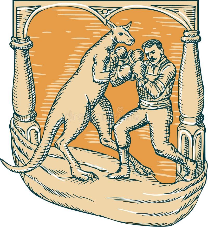 Gravure à l'eau-forte d'homme de boxe de kangourou illustration de vecteur