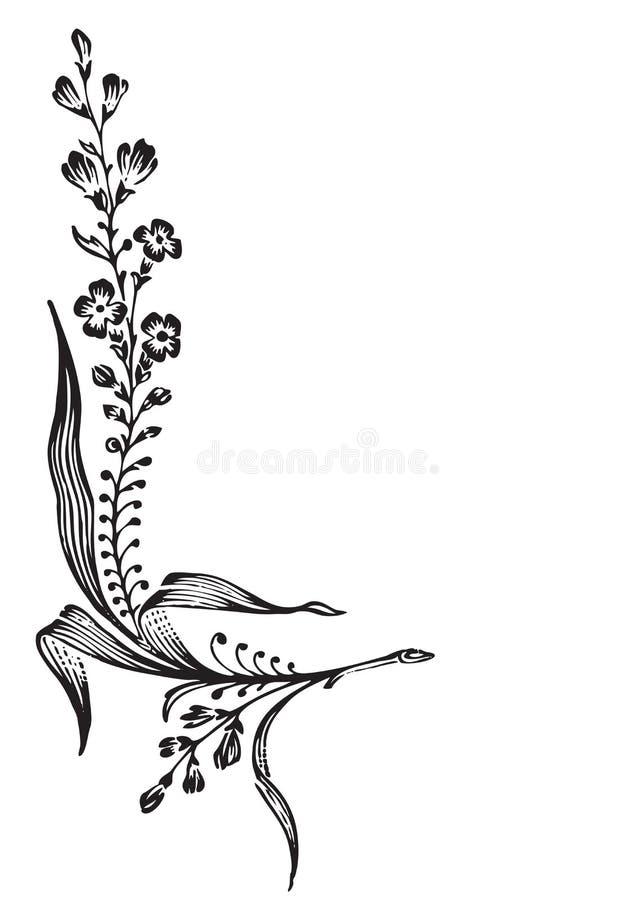 Gravure antique de coin de fleur (vecteur) illustration libre de droits