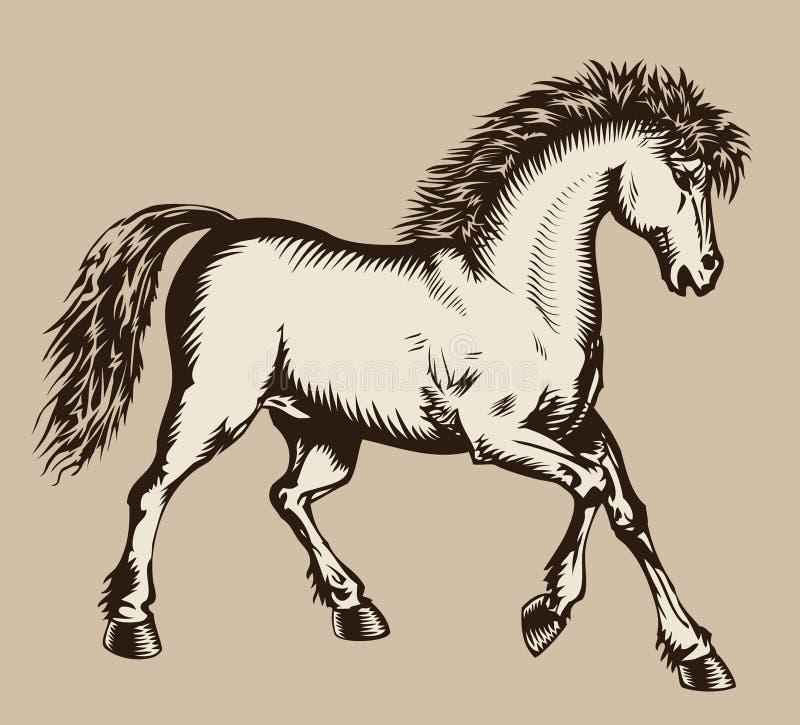 Gravure sur bois caracolante de cheval illustration stock