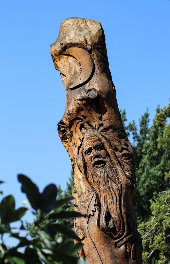 Gravure van een groene mens en een maan in lange een stomp-boom boomstam bij Linnaeus-het Onderwijstuin in Tulsa Oklahoma de V.S. royalty-vrije stock foto