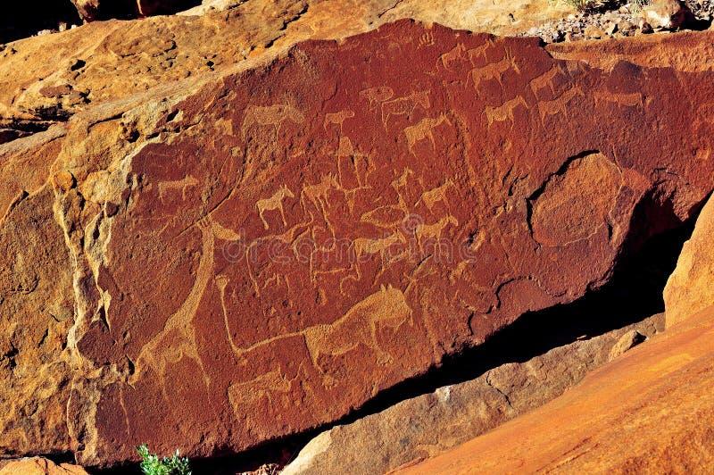 Gravures de roche chez Twyfelfontein, Namibie images libres de droits