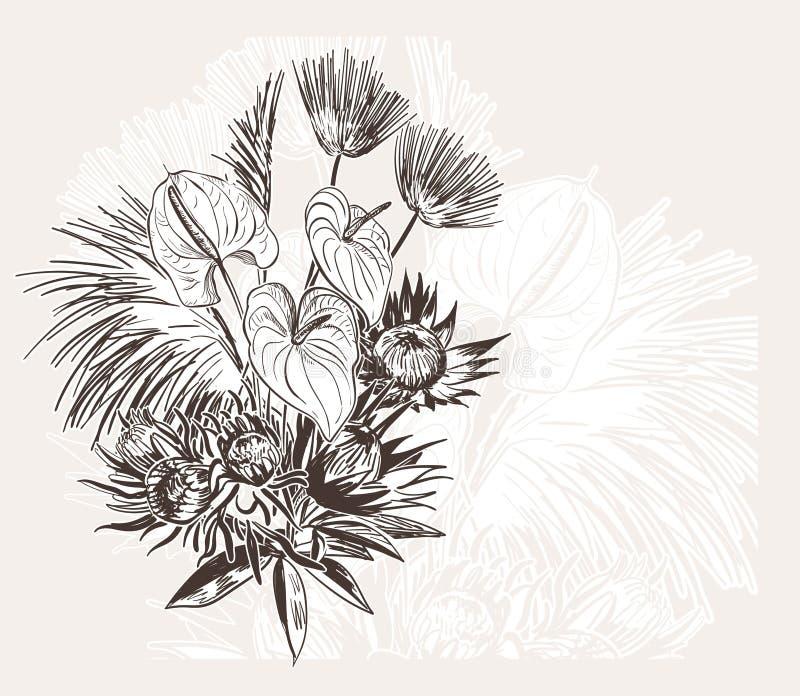 Grawerujący abstrakcjonistycznego kwiatu wektorowego bakground elegancki ślub świętuje rocznika anthurium ilustracji