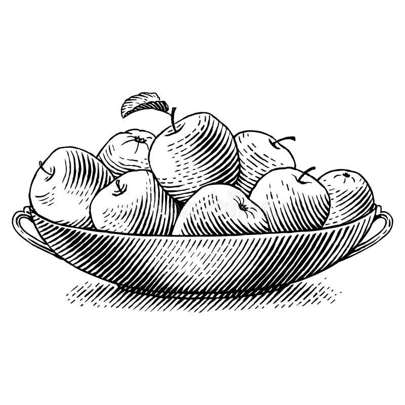 Grawerujący jabłka royalty ilustracja