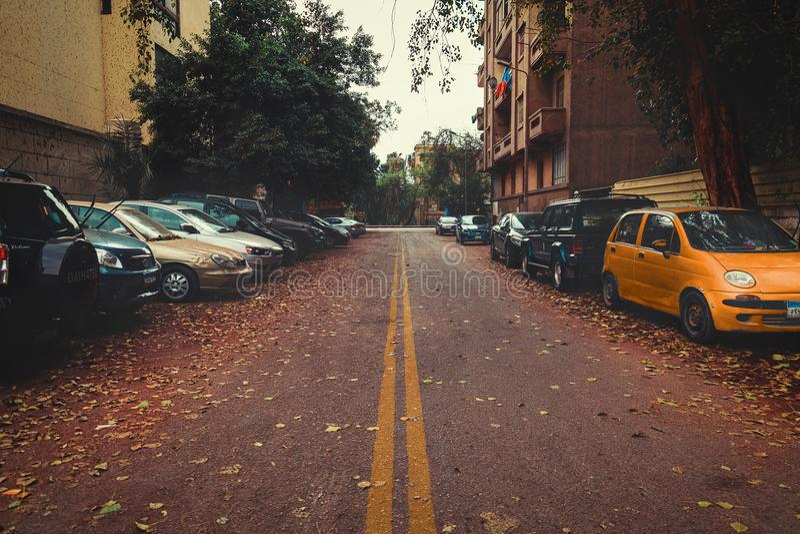 Gray Asphalt Road Between Cars stock image