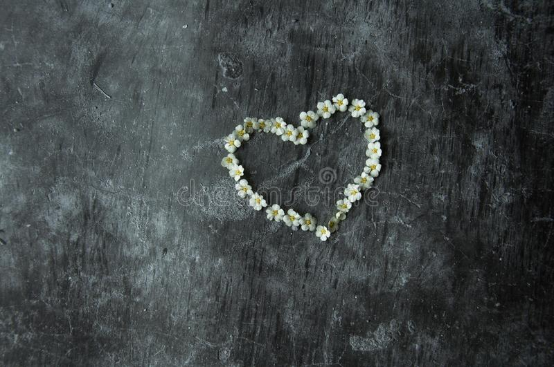 Gray background marble gloomy cement floor. Symbol heart laid out with flowers. The figure of the heart is lined with flowering stock image