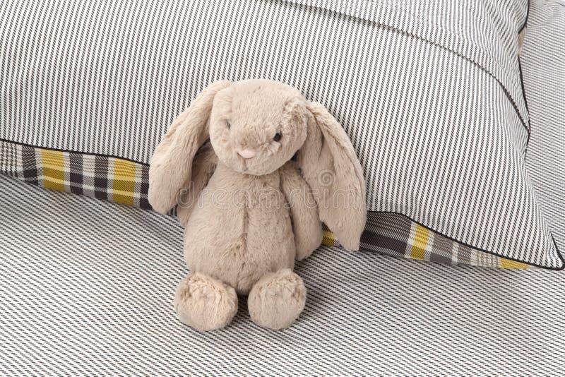 Gray Bunny photographie stock libre de droits