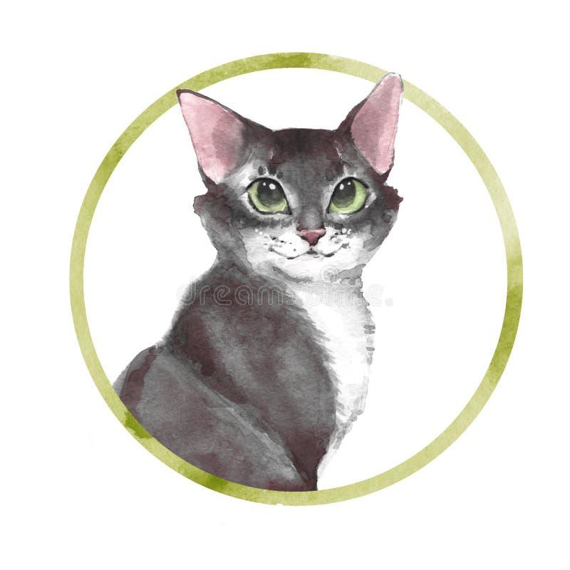 Gray cat. Watercolor illustration stock illustration