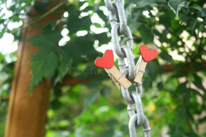 Gray chain with two clothes pegs attached to it. Green blurred background in the garden. A symbol of love for Valentine`s Day royalty free stock photos