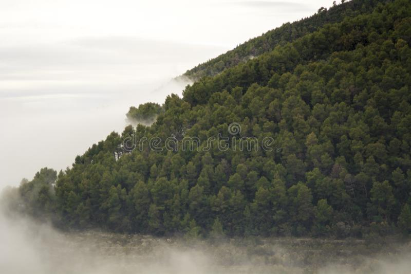 Gray clouds and fogs makes perfect texture stock image
