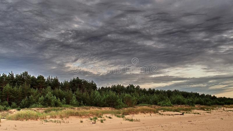 Storm clouds over forest stock photography