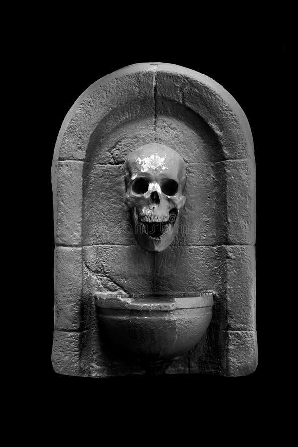 Gray Dark Skull sur le fond noir photos stock