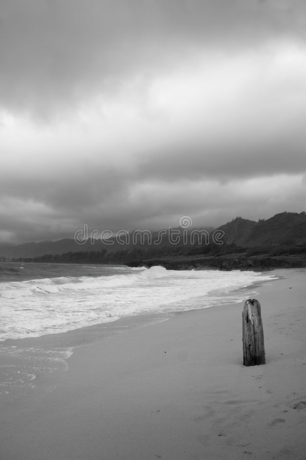Download Gray day at the beach stock image. Image of black, sand - 275645