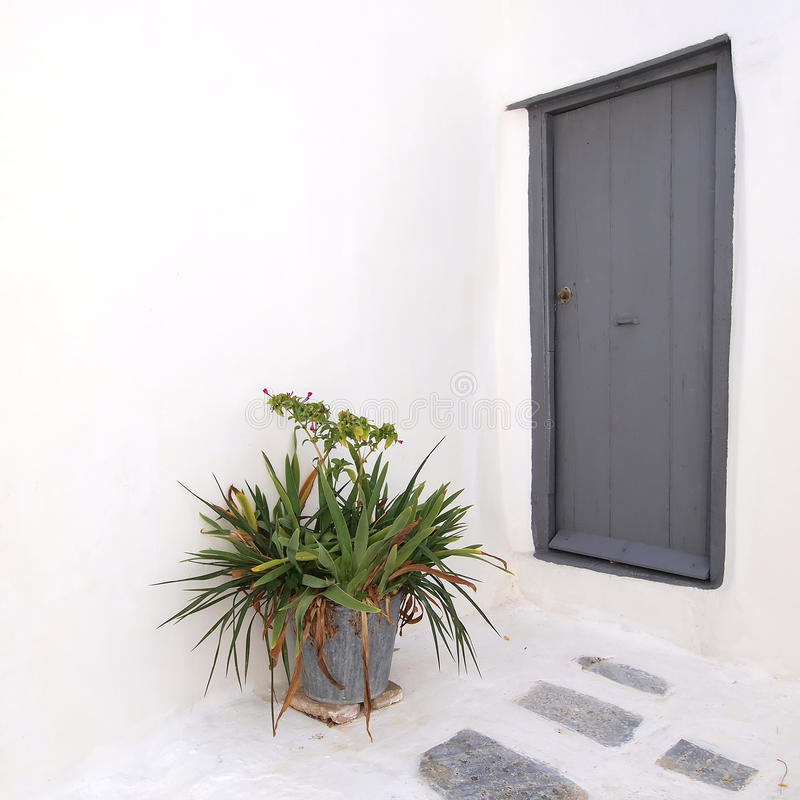 Gray door and flowerpot royalty free stock image