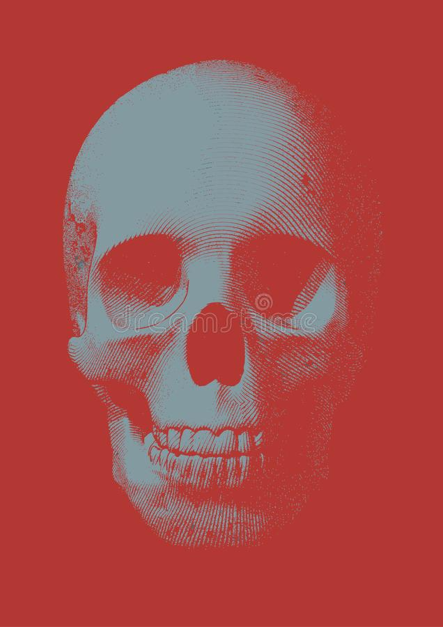 Gray engraving skull front view on red BG. Light blue gray engraving skull front view vector illustration on vermillion red background royalty free illustration