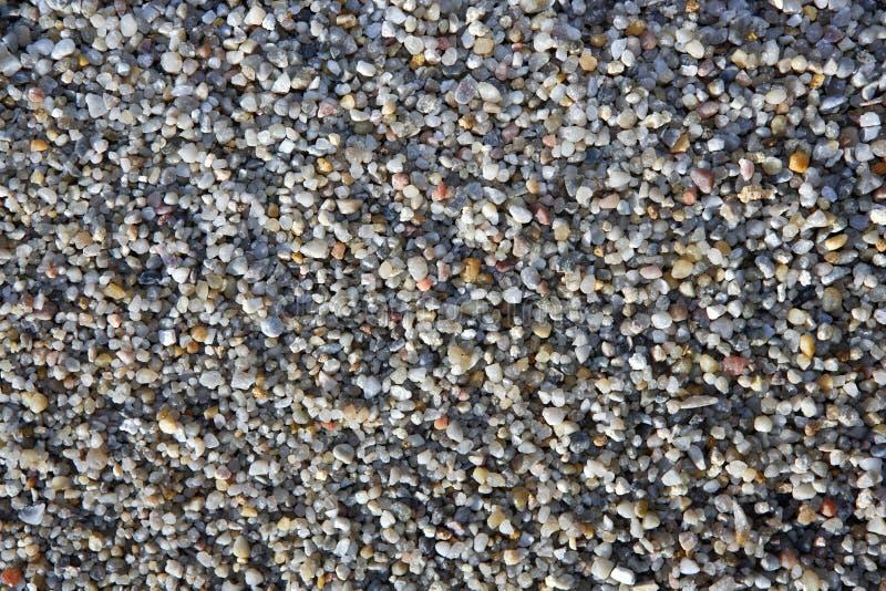 gray för grus för bakgrundscloseupfärg royaltyfri foto