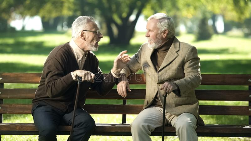 Gray friends spending time on bench in park breathing fresh air and talking stock images