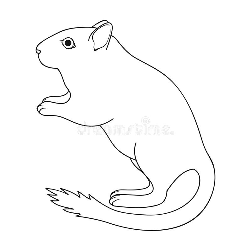 Gray gerbil.Animals single icon in outline style vector symbol stock illustration web. Gray gerbil.Animals single icon in outline style vector symbol stock stock illustration